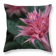 Spiky Pink Throw Pillow