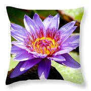 Spiky Sunshine Throw Pillow