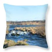 Spillway Panorama Throw Pillow