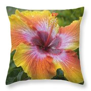 Spin The Bottle Hibiscus Throw Pillow