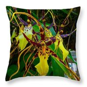 Spindly Orchid Throw Pillow