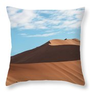 Spine Of The Desert Throw Pillow