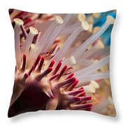 Spines Of A Crown Of Thorns Starfish Throw Pillow