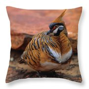 Spinifex Pigeon Throw Pillow