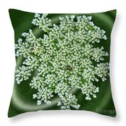 Spinning Lace Throw Pillow