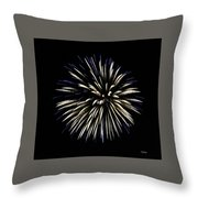Spiny Aster Throw Pillow by Sally Sperry