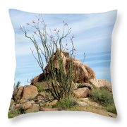 Spiny Cactus East Of Wickenburg Throw Pillow
