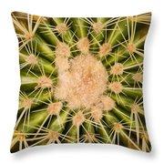Spiny Cactus Needles Throw Pillow