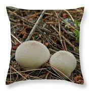 Spiny Puff Balls Throw Pillow