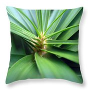 Spiral Leaves Throw Pillow