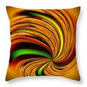 Spiral On Wood Throw Pillow