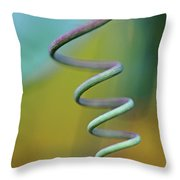 Spiraling Throw Pillow