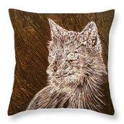 Spirit Fox  Throw Pillow