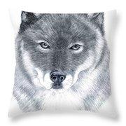 Spirit Guide Throw Pillow
