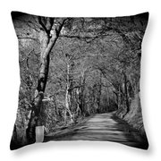 Spirit In The Woods.  Throw Pillow