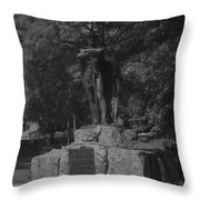 Spirit Of The Confederacy Black And White Throw Pillow