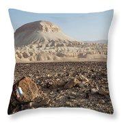 Spirit Of The Desert Throw Pillow