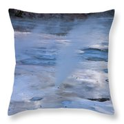 Spirit Of The Earth  Throw Pillow