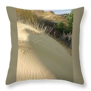 Spirit Sands - Late Day Throw Pillow