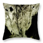 Spirit Tree Throw Pillow by Paul W Faust -  Impressions of Light
