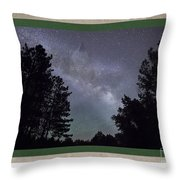 Spirit Wolf Collection - 5 Throw Pillow