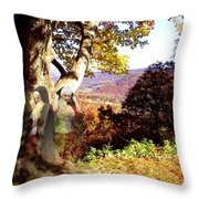 Spirits In View Throw Pillow