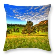 Spiritual Sky Throw Pillow by Scott Mahon