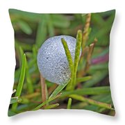 Spittle Bug Case Throw Pillow