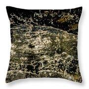 Splash II Throw Pillow