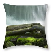 Splash Throw Pillow