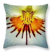 Splash Of Color 2 Throw Pillow