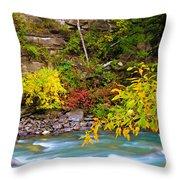 Splash Of Color Along The Creek Throw Pillow