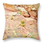 Splash Of Color In Valley Of Fire's Wash 3 Throw Pillow