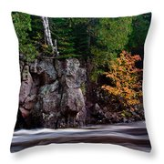 Splash Of Fall Color Throw Pillow