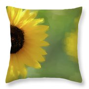Splash Of Yellow Throw Pillow
