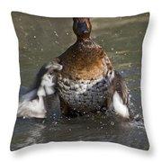 Splash Time Throw Pillow