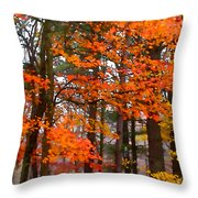 Splashes Of Autumn Throw Pillow