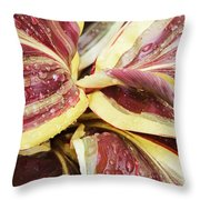 Splashing Around Throw Pillow