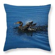 Splashing Cormorant Throw Pillow