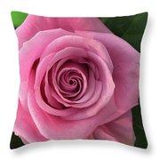Splendid Rose Throw Pillow