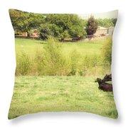 Splendor In The Grass Throw Pillow