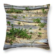 Splinters In The Sand Throw Pillow
