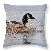 Splish Splash - Canada Goose Throw Pillow