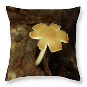 Split Capped Mushroom Throw Pillow
