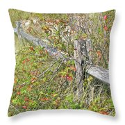 Split Rail Fence And Poison Ivy Throw Pillow