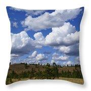 Spokane Cloudscape Throw Pillow