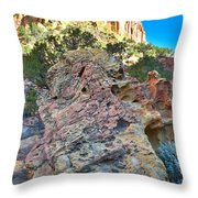 Sponge Boulder Throw Pillow