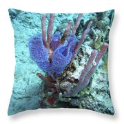 Sponge Garden Throw Pillow