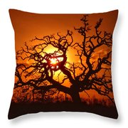 Spooky Tree Throw Pillow by Stephen Anderson