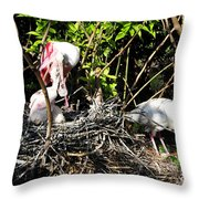 Spoonbill Family Throw Pillow